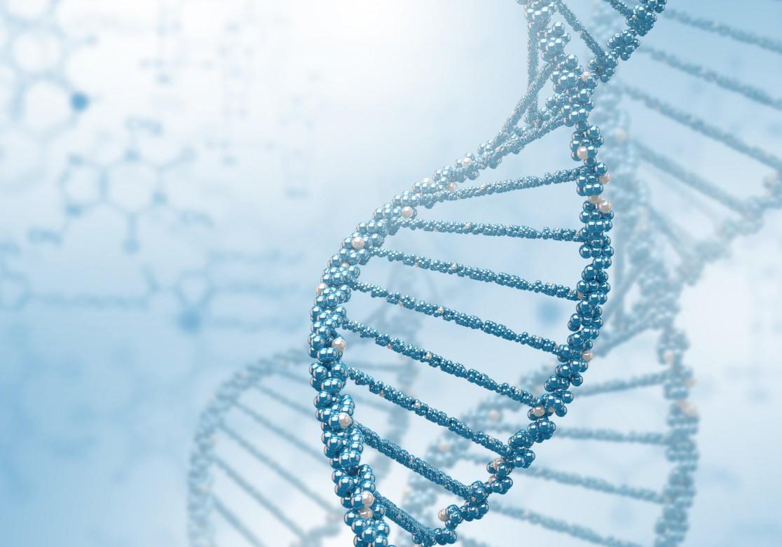 メタゲノム